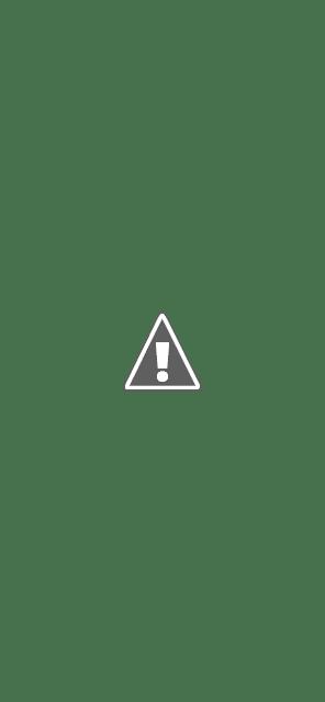 Vous pouvez ensuite sélectionner l'application avec laquelle vous souhaitez partager ou copier le lien afin que vous puissiez le faire vous-même.