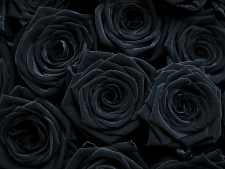 Related Pictures gothic rose mobile wallpaper