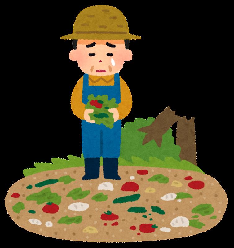 自然災害の被害にあった野菜農家のイラスト かわいいフリー素材集