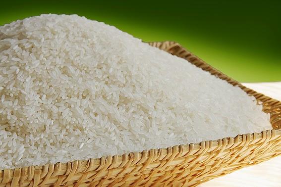 Đại lý gạo Hải Hậu
