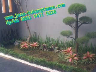 http://www.jasa-tukangtaman.com/2017/03/tukang-bikin-taman-di-alam-sutera.html