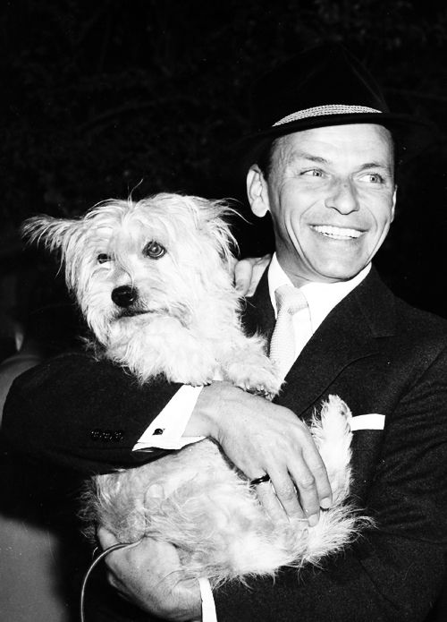 Frank Sinatra with Snuffy on the set of the Movie: Pal Joey, 1957 ...