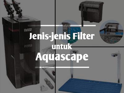 Jenis-jenis filter untuk aquascape