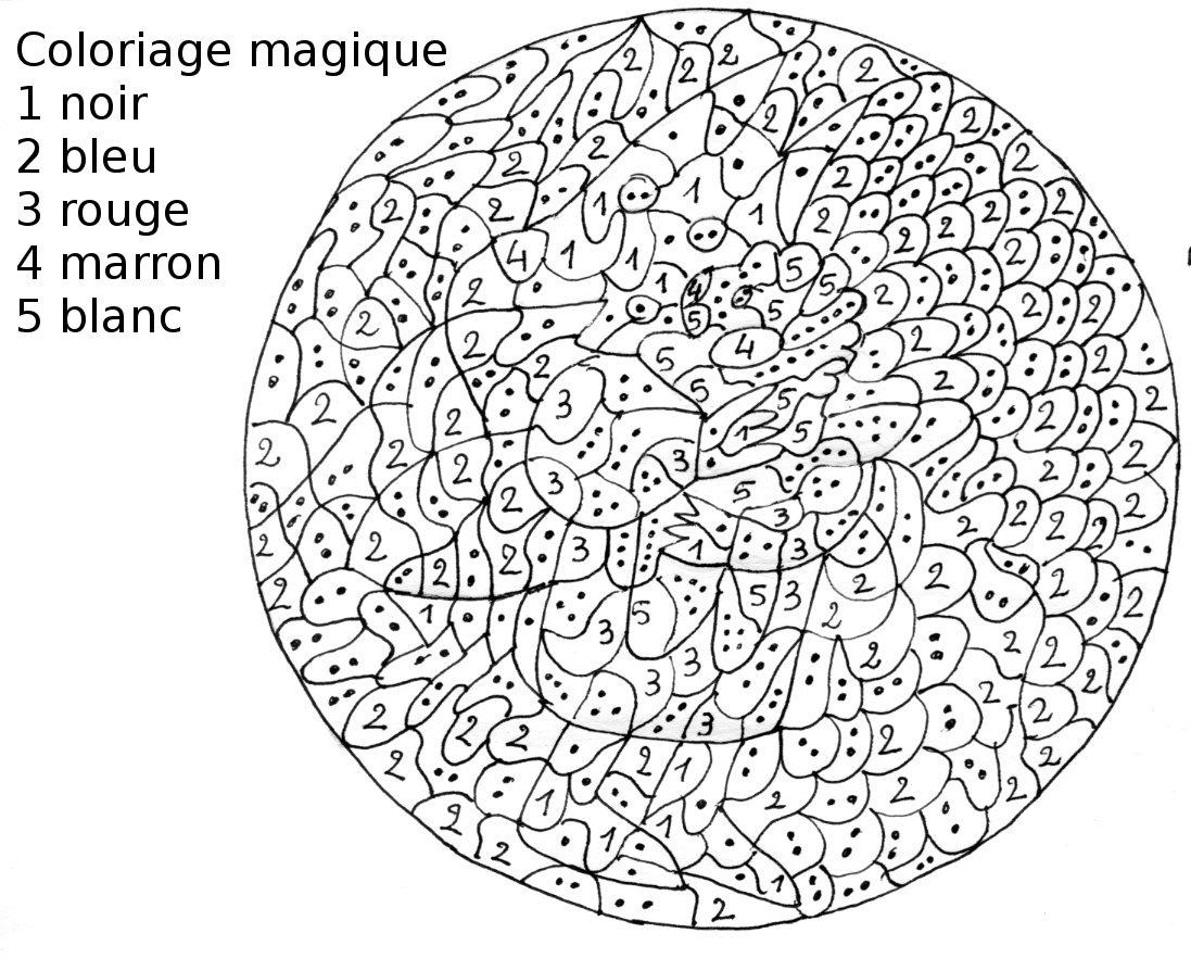 Coloriage A Imprimer Gratuit Coloriage En Ligne Reine Des Neiges