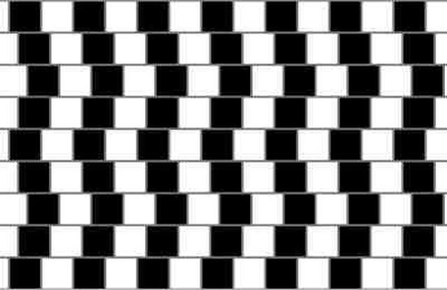Optical Illusion Cafe Wall