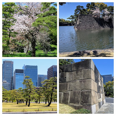 Japan in April: Imperial Palace Gardens in Tokyo