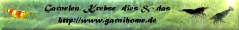 garnihome.de/aufzucht.html