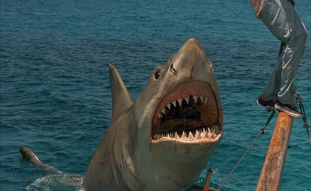 Crítica - Tubarão 4: A Vingança