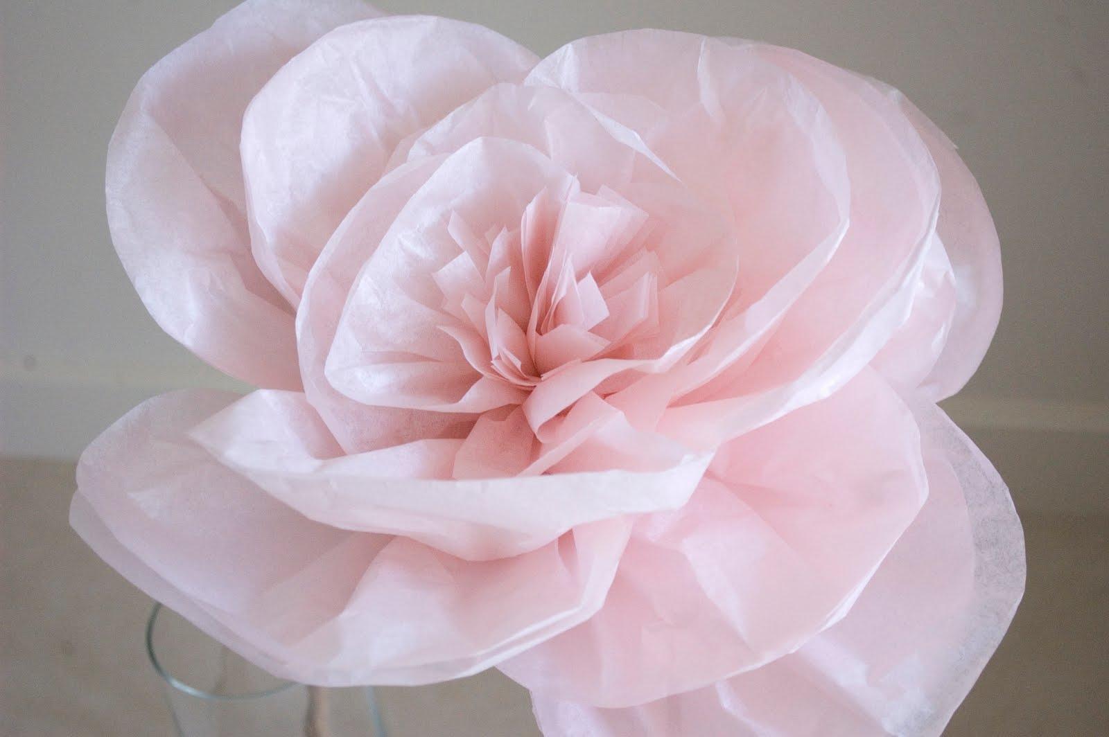 Grace Designs: Paper Flowers