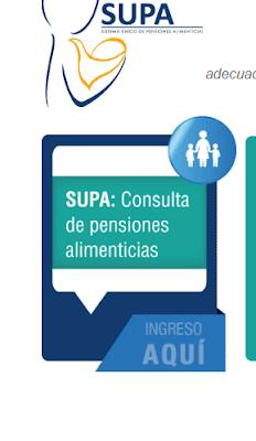 CONSULTA DE PENSIONES ALIMENTICIAS