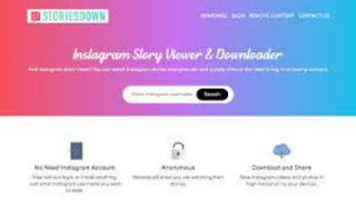cara melihat story intsgram melalui storiesdown