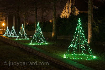 Row of trees with green lights