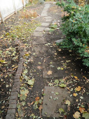 Cabbagetown Toronto Fall Backyard Garden Cleanup by Paul Jung Gardening Services after