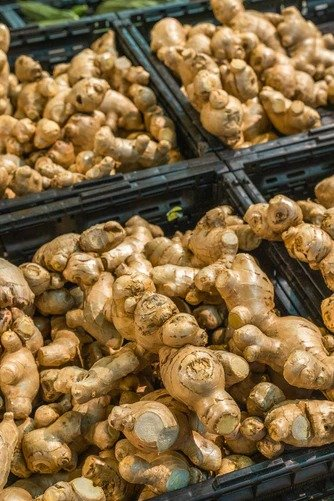ginger benefits/ ginger benefits and side effects