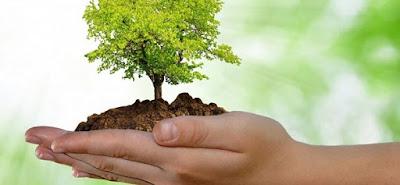 Resultado de imagen para ambientalista