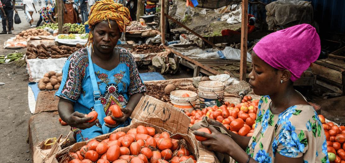 كوفيد-19 قد يصيب أكثر من 200 مليون في إفريقيا وفق نماذج أعدتها منظمة الصحة العالمية