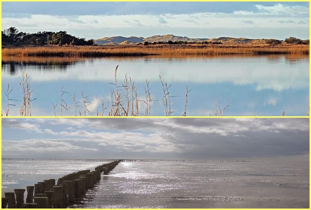Naturaleza Dinamarca