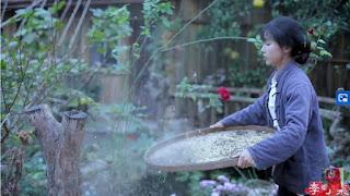 Li, thường đăng video về cuộc sống của mình ở vùng nông thôn tỉnh Tứ Xuyên, Trung Quốc. cô ấy thường thu hoạch sản vật của Trái đất và cho người xem thấy cách cô ấy nấu thức ăn, chuẩn bị các nguyên liệu thô như nước tương. Li thậm chí còn tự làm đồ nội thất từ tre và gỗ mà cô có được từ thiên nhiên.