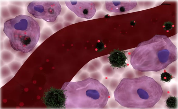 Heating cancer cells with magnetic nanoparticles can enhance chemotherapy