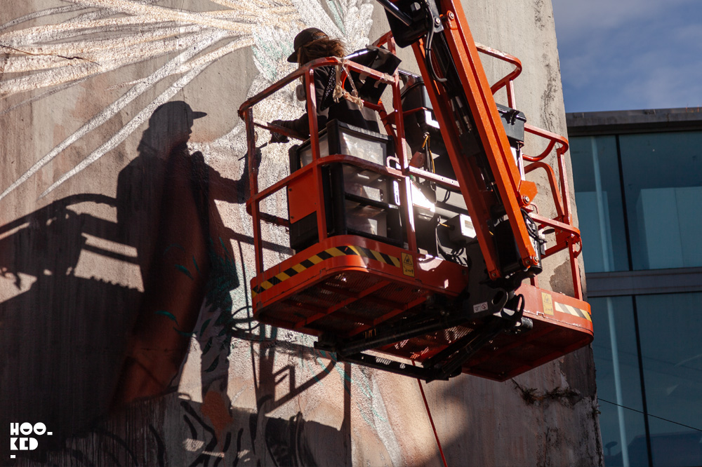 Street Artists transform Waterford City into an open air gallery for Waterford Walls, Ireland's Largest Street Art Festival
