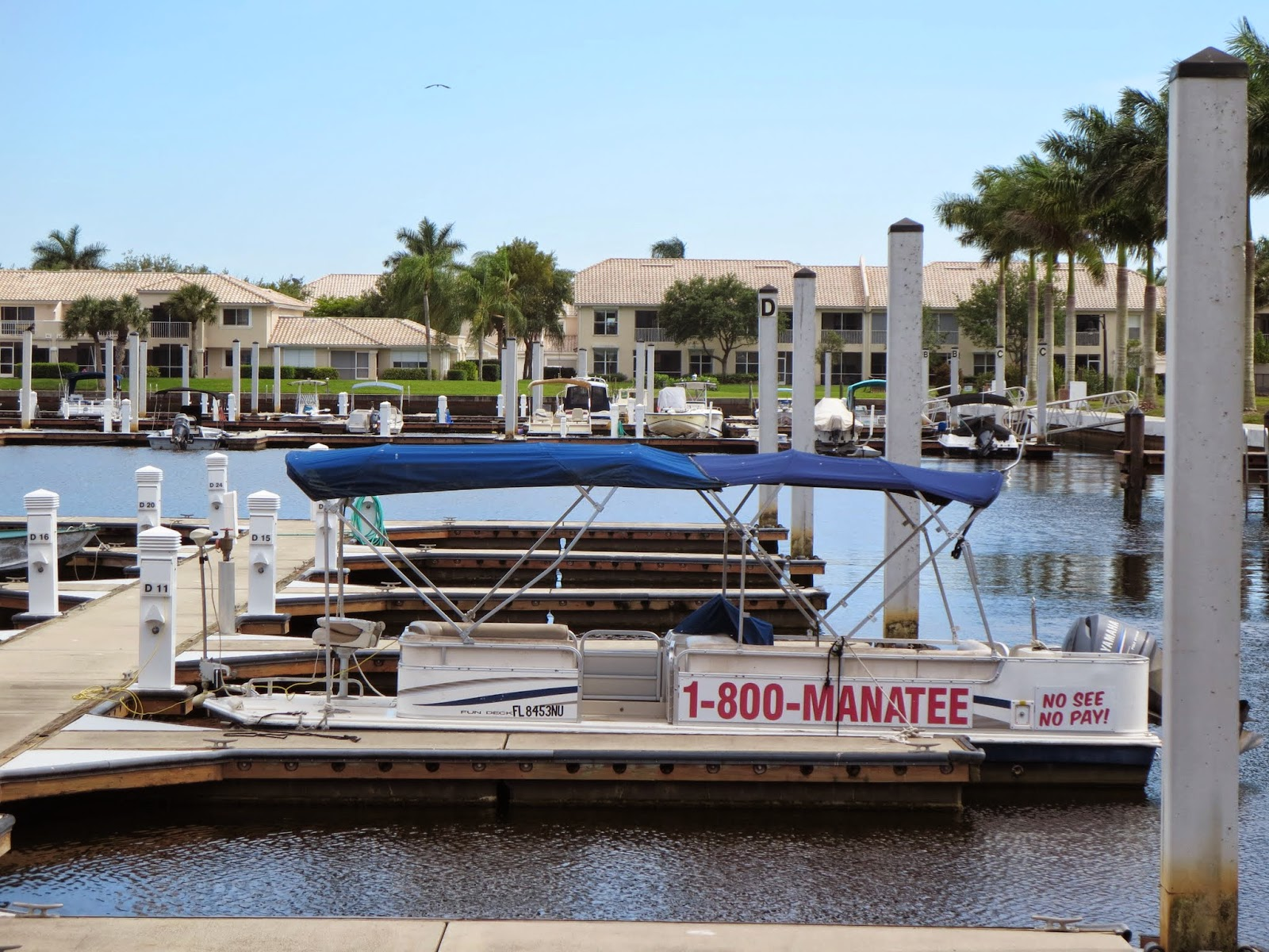 Manatee Sightseeing Eco-Adventures boat in Naples, Florida at the edge of the Everglades