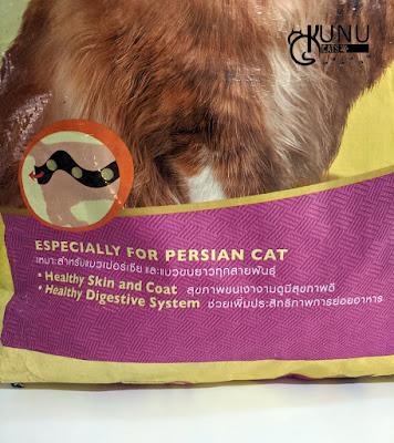 Makanan Kucing untuk Kucing Persia