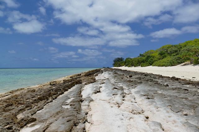 Heron Island Strand Beach Insel steinig Fels Natur