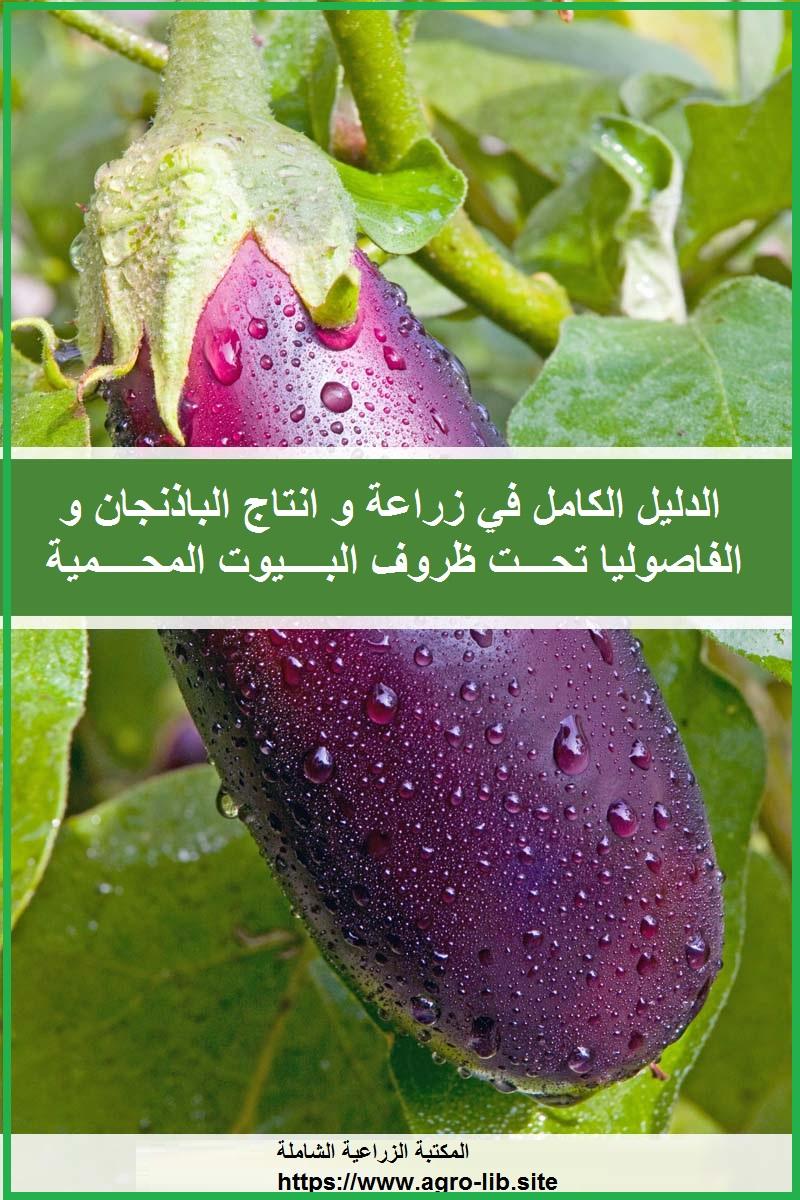 كتاب : الدليل الكامل في زراعة و انتاج الباذنجان و الفاصوليا تحت ظروف البيوت المحمية
