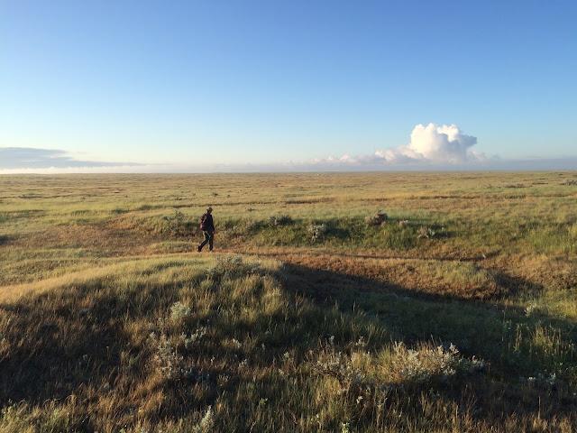 Grasslands of Alberta Canada