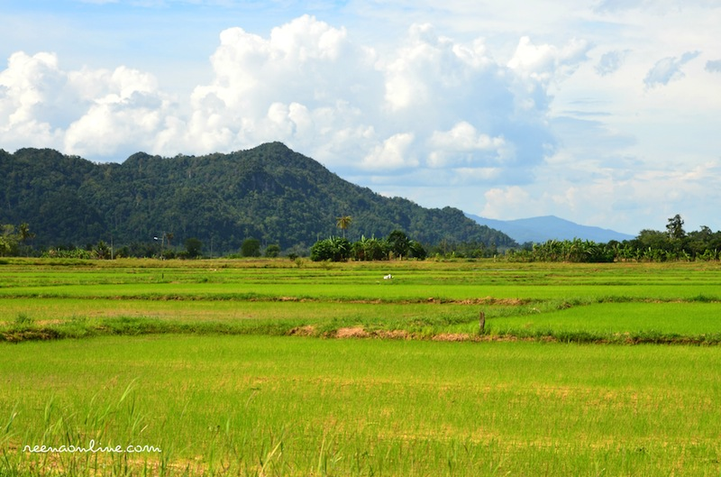 gambar pemandangan kampung - photo #19