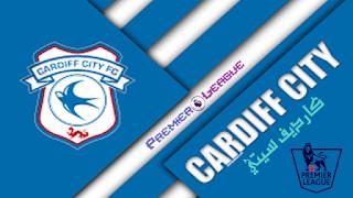 كارديف سيتي,الدوري الانجليزي,فرق الدوري الانجليزي,الدوري الإنجليزي الممتاز الفرق