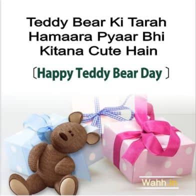 Teddy Day Sayings and Quotes In Hindi