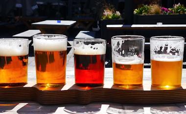 Curso Cervejeiro Artesanal