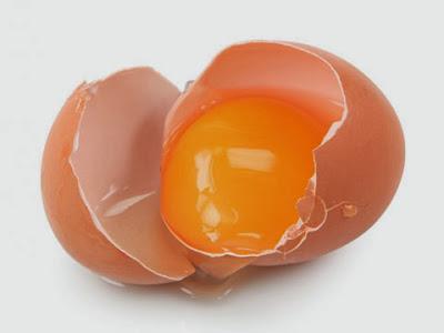 Manfaat Kuning Telur untuk Rambut | Roliyan.com