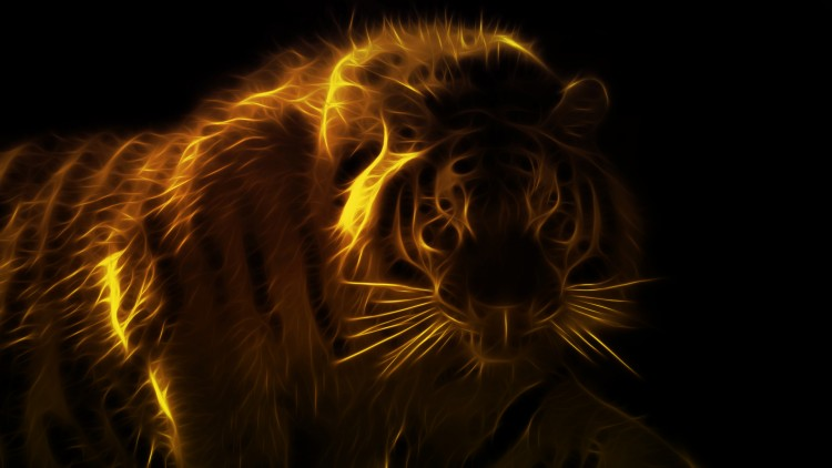 Tigre 3d 1920x1080 fonds d 39 cran hd for Fond ecran animaux hd