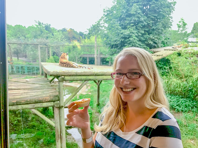 Me standing with a Bakewell Tart in front of a glass window, behind me two tigers are visible