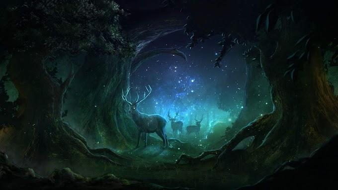 Fantasia, Cervo, Floresta Encantada