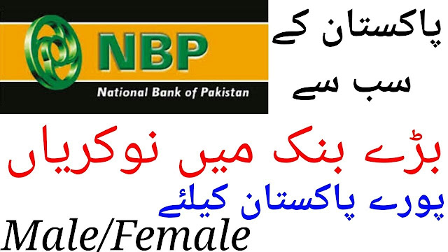 NBP Jobs 2019 National Bank of Pakistan Jobs Latest Advertisement Apply Online