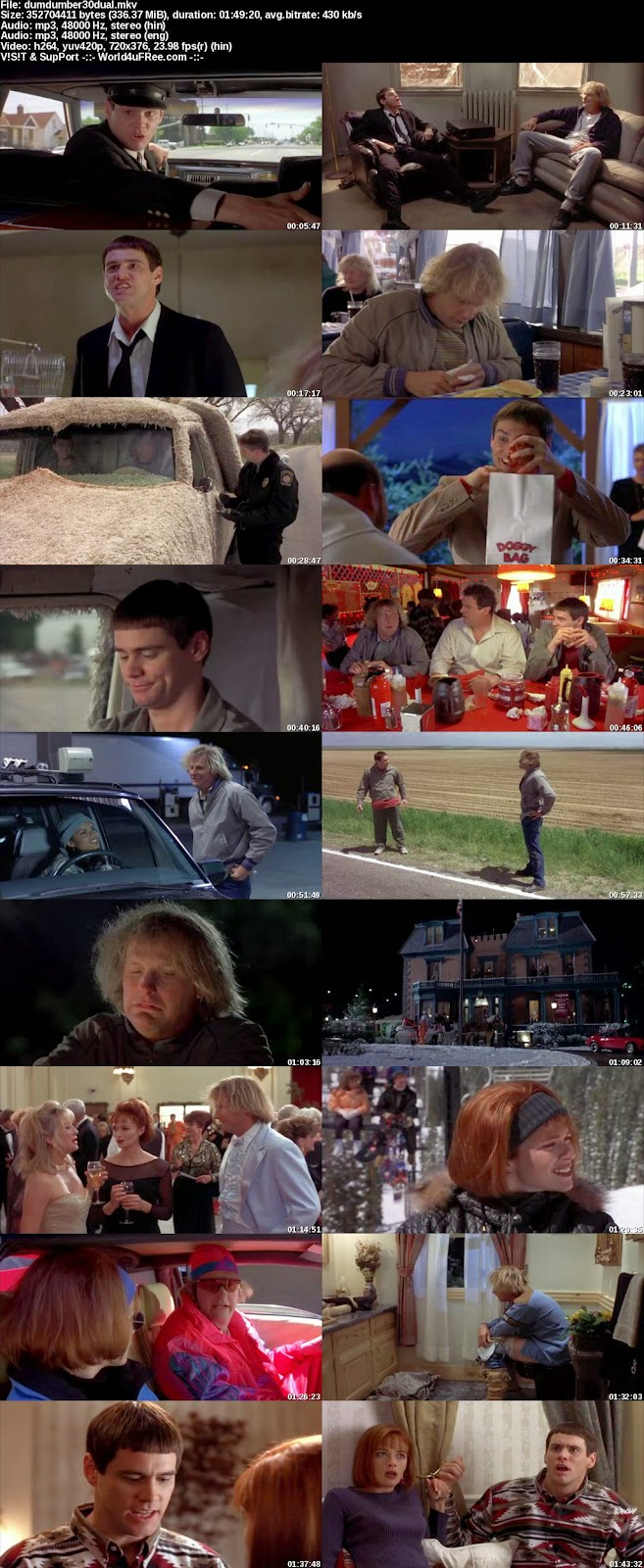 Download Dumb And Dumber 1994 In Hindi Hd