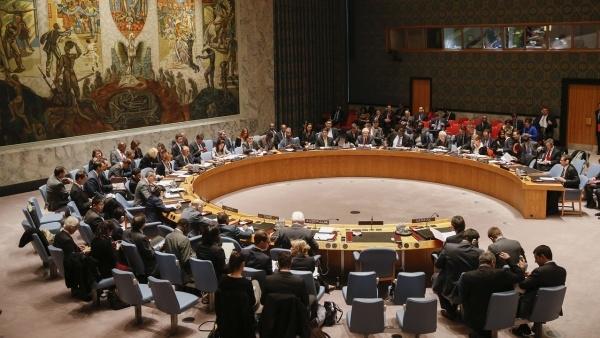 Security Council expresses full support for Kohler's efforts