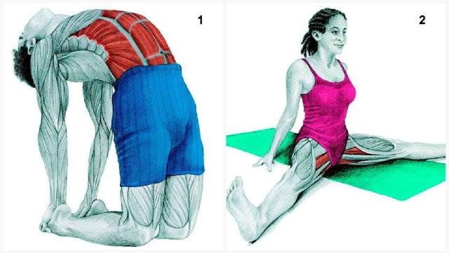 04 photos pour voir quel muscle vous êtes en train d'étirer
