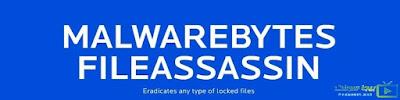 تحميل برنامج مسح الملفات المستعصية File ASSASSIN