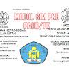 Modul SIM PKB Guru PAUD/TK Tahun 2017 Pedagogik dan Profesional 10 Kompetensi Lengkap