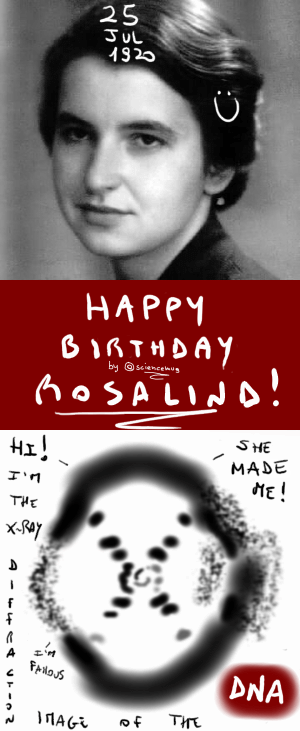 Happy birthday Rosalind Franklin! (by sciencemug)
