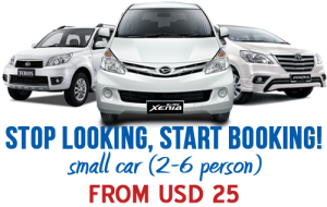Car Rental With Cheap Professional Driver In Bali