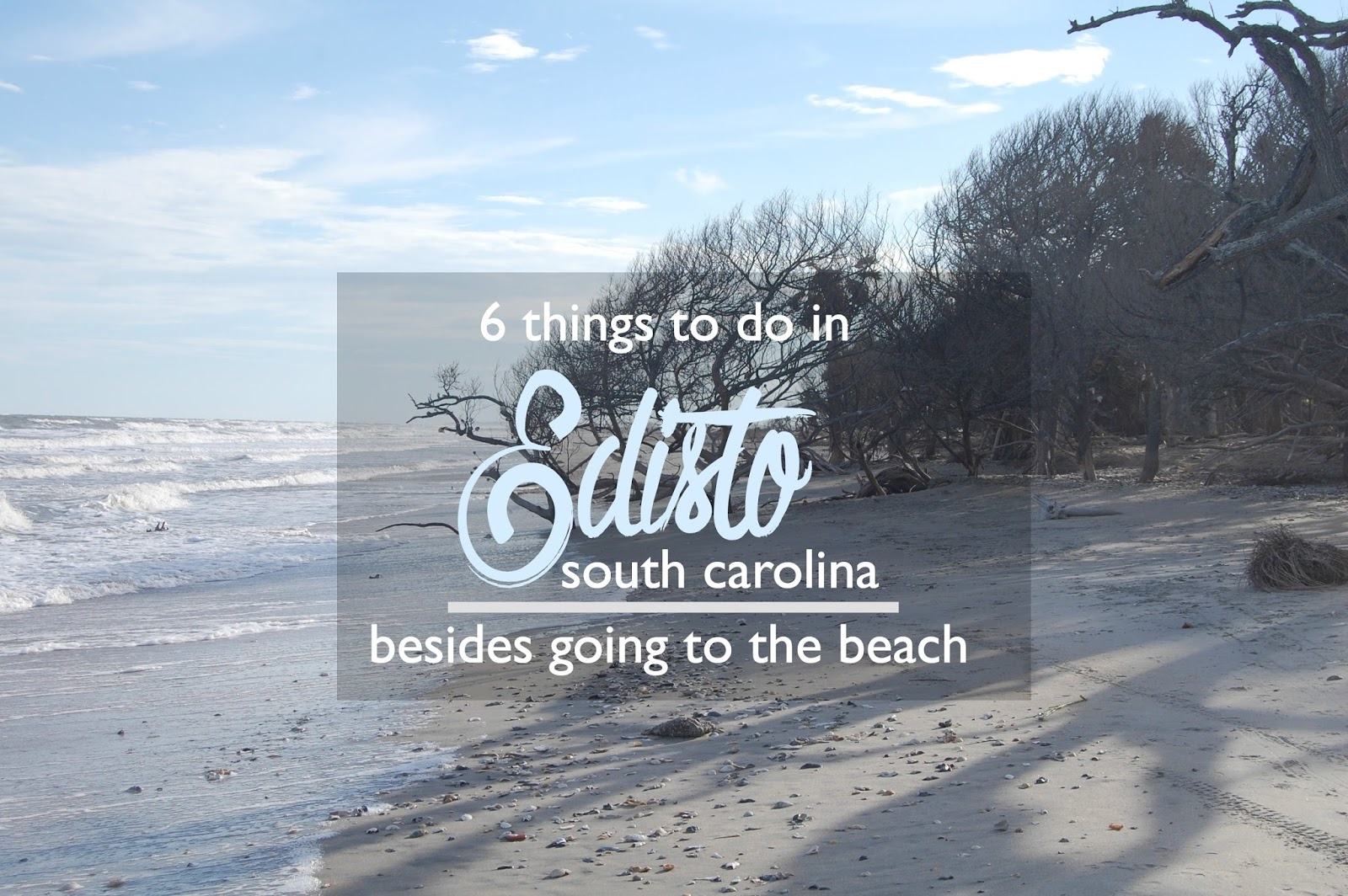 What To Do On Edisto Island South Carolina Besides Going The Beach
