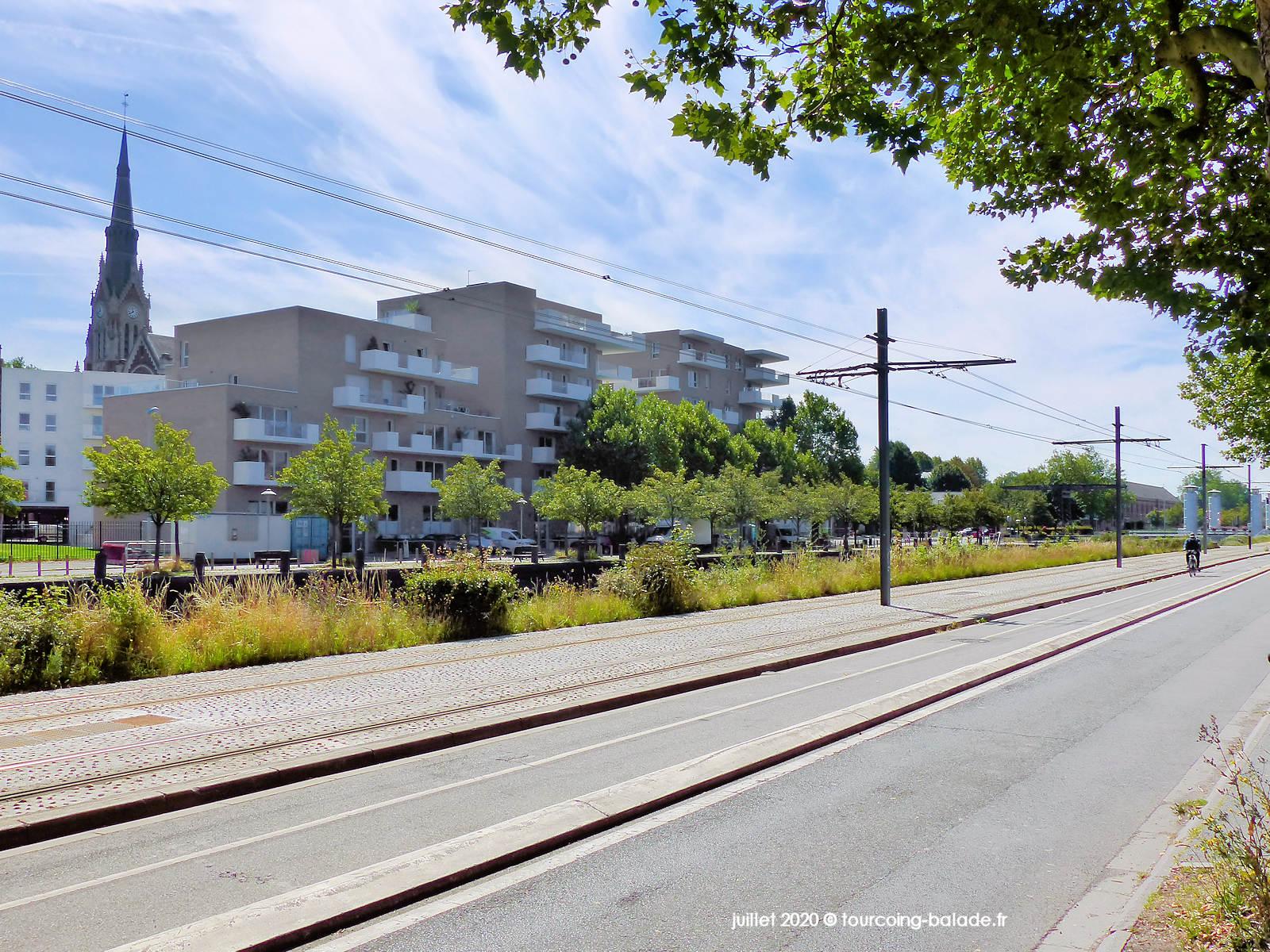 Verdure arbres Quai de Cherbourg, Tourcoing 2020