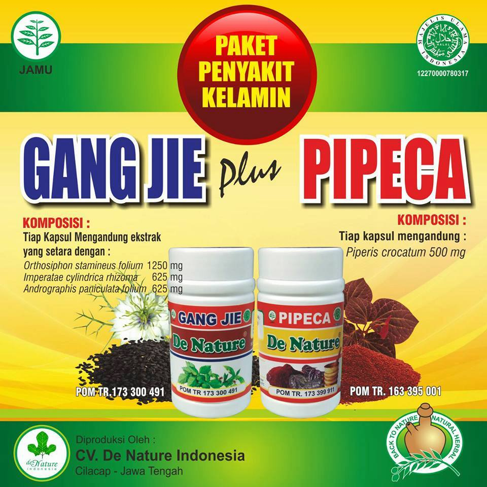 Dokter Spesialis Kemaluan: Resep Obat Herbal Kencing Nanah