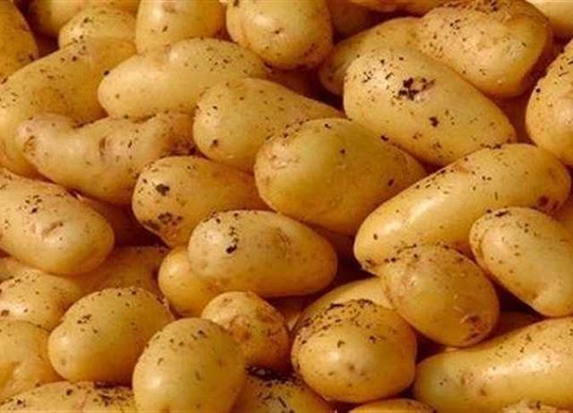 دراسة جدوى فكرة مشروع تصدير البطاطس المصريه الى روسيا فى مصر 2018