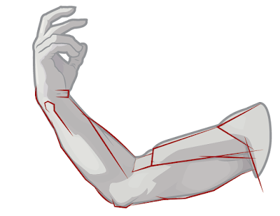 Draw the arm structures